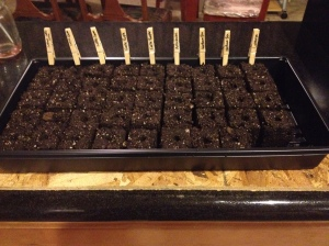 full soil block tray