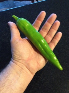 NM Pepper